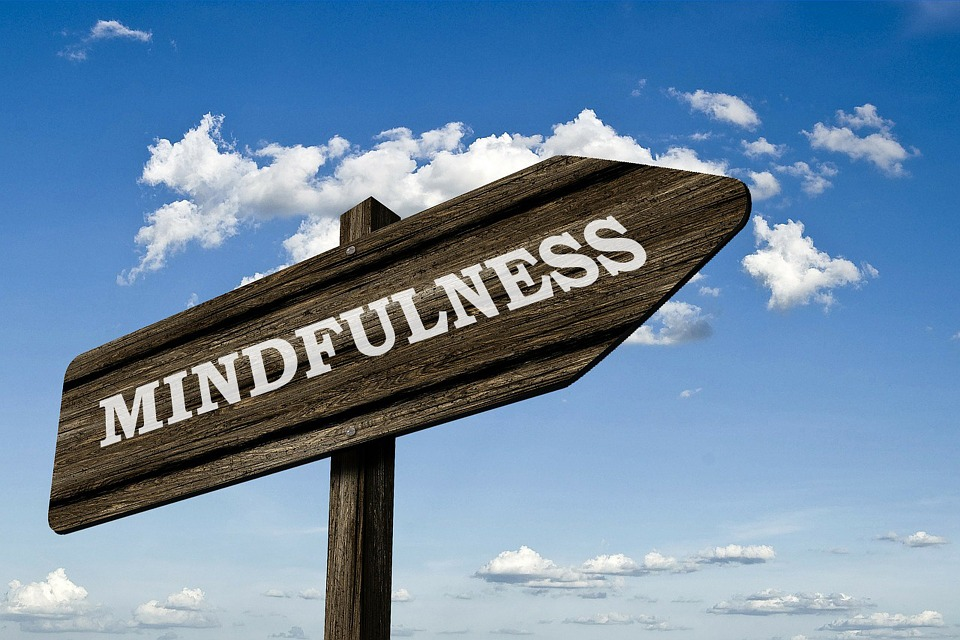 mindfulness neurociencia